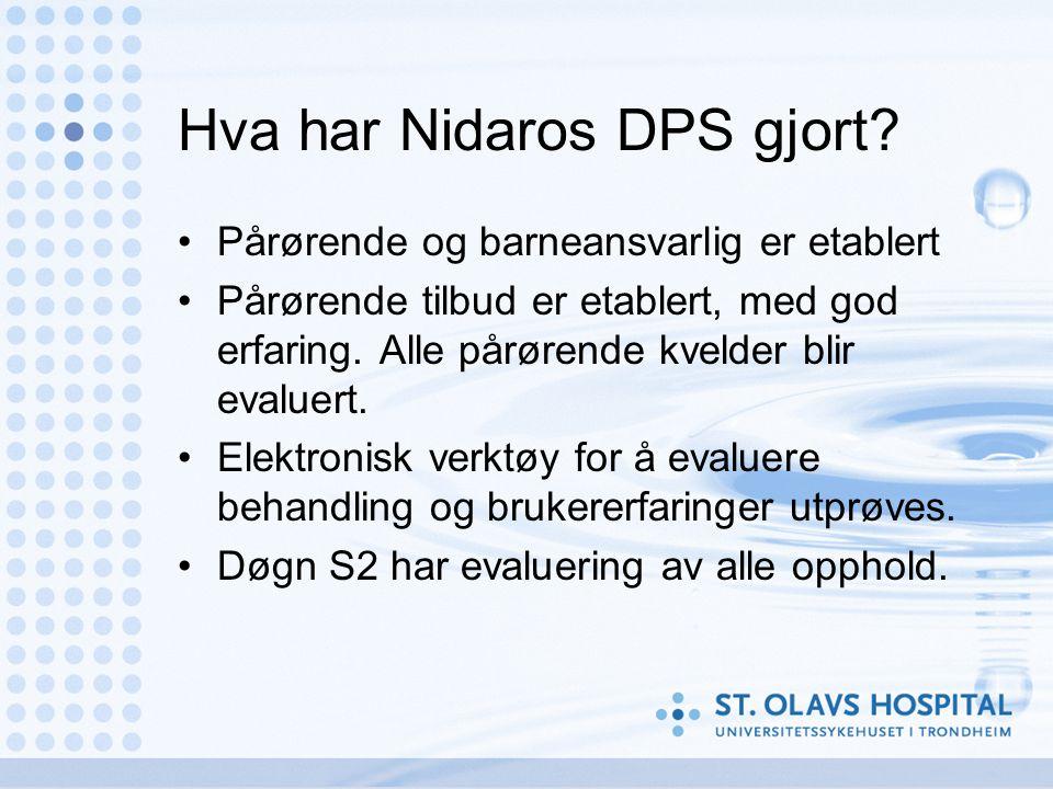 Hva har Nidaros DPS gjort