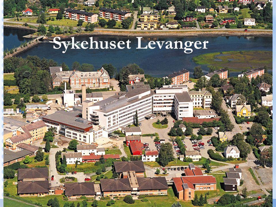 Sykehuset Levanger . SØK-prosjekt Randi Skei Fossland