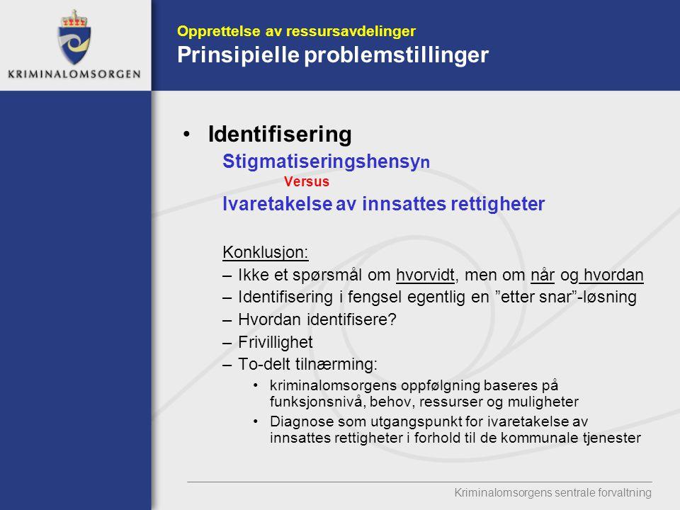 Opprettelse av ressursavdelinger Prinsipielle problemstillinger