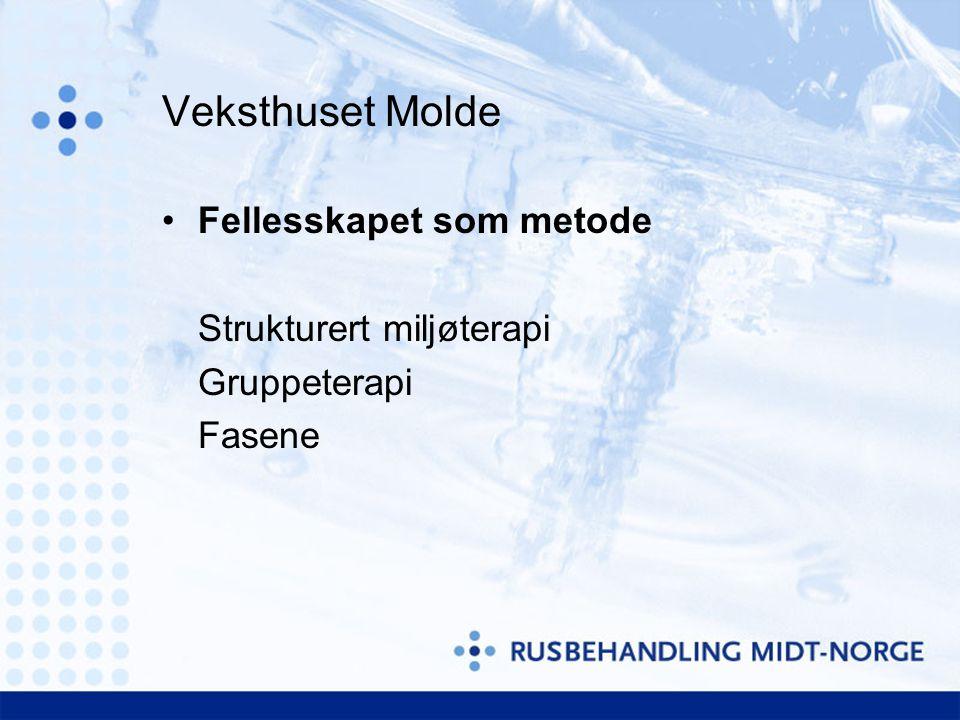 Veksthuset Molde Fellesskapet som metode Strukturert miljøterapi
