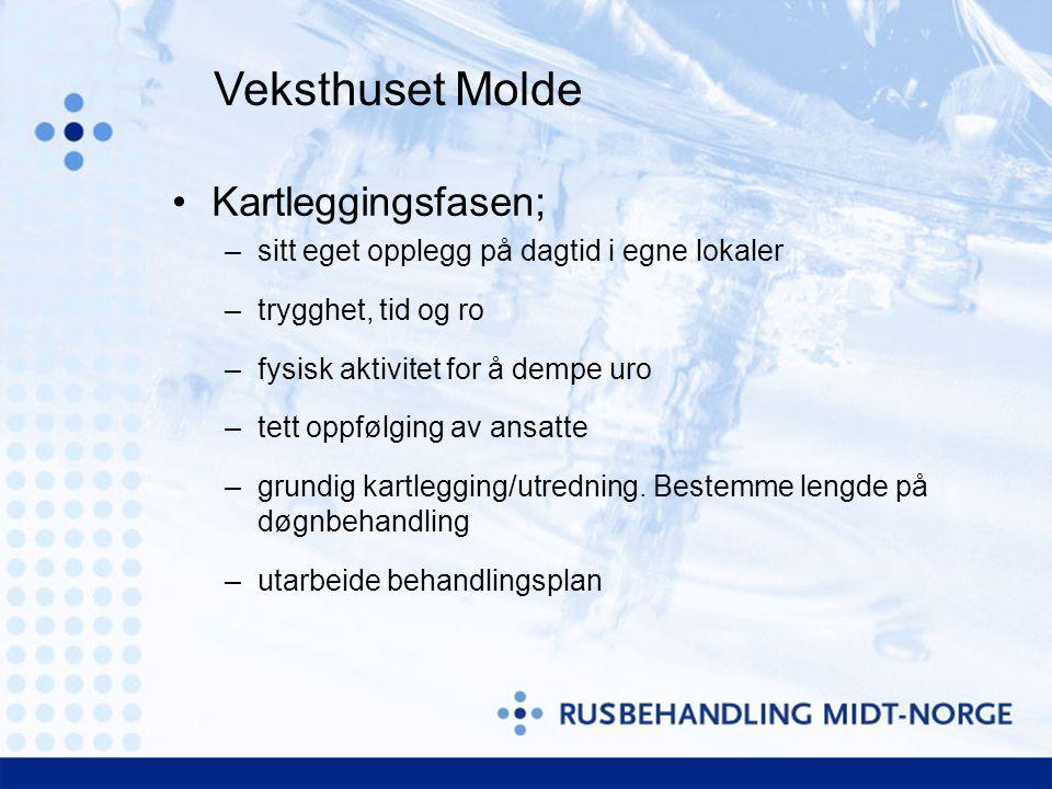 Veksthuset Molde Kartleggingsfasen;