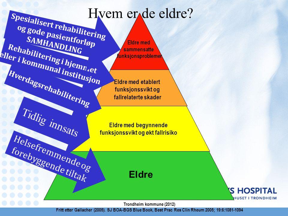 Hvem er de eldre Tidlig innsats Helsefremmende og forebyggende tiltak