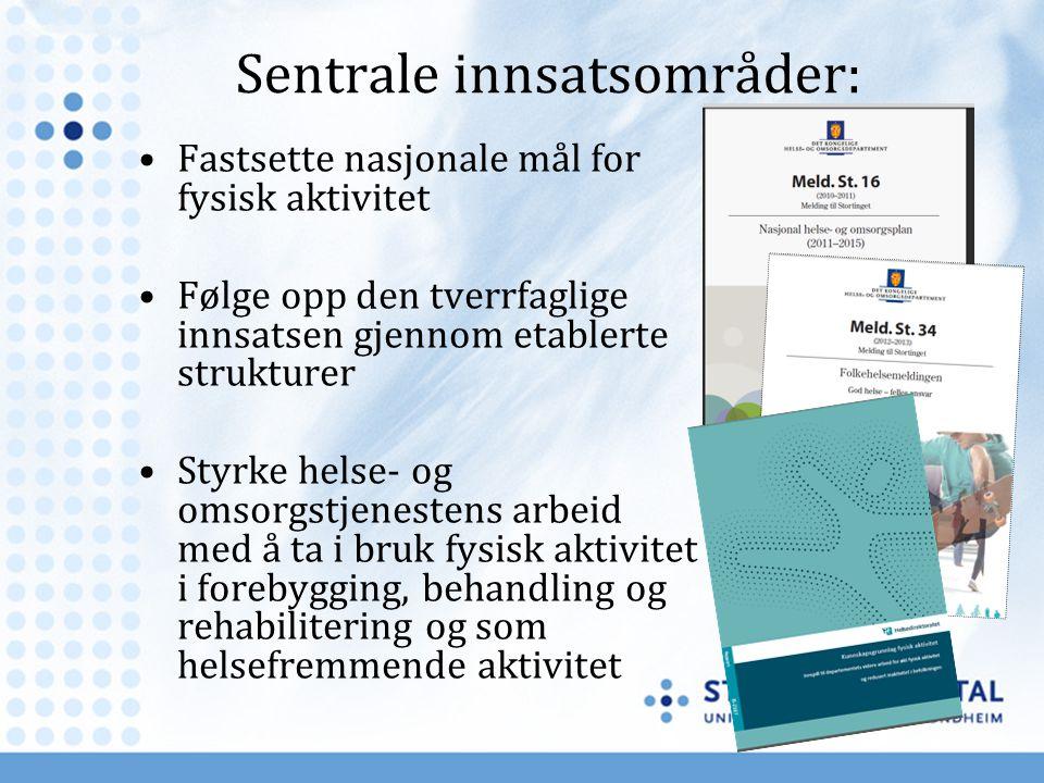 Sentrale innsatsområder: