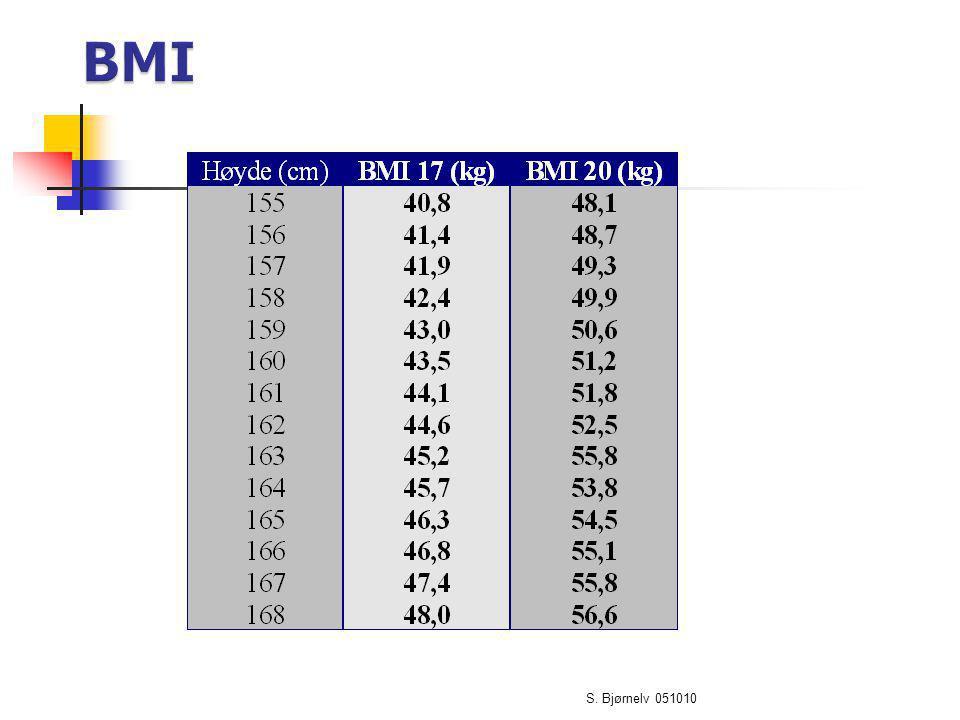 BMI S. Bjørnelv 051010