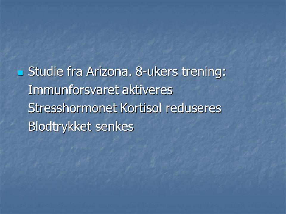 Studie fra Arizona. 8-ukers trening: