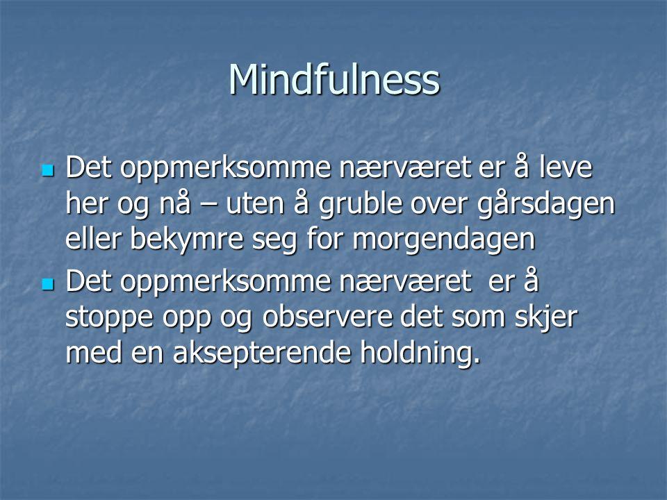Mindfulness Det oppmerksomme nærværet er å leve her og nå – uten å gruble over gårsdagen eller bekymre seg for morgendagen.