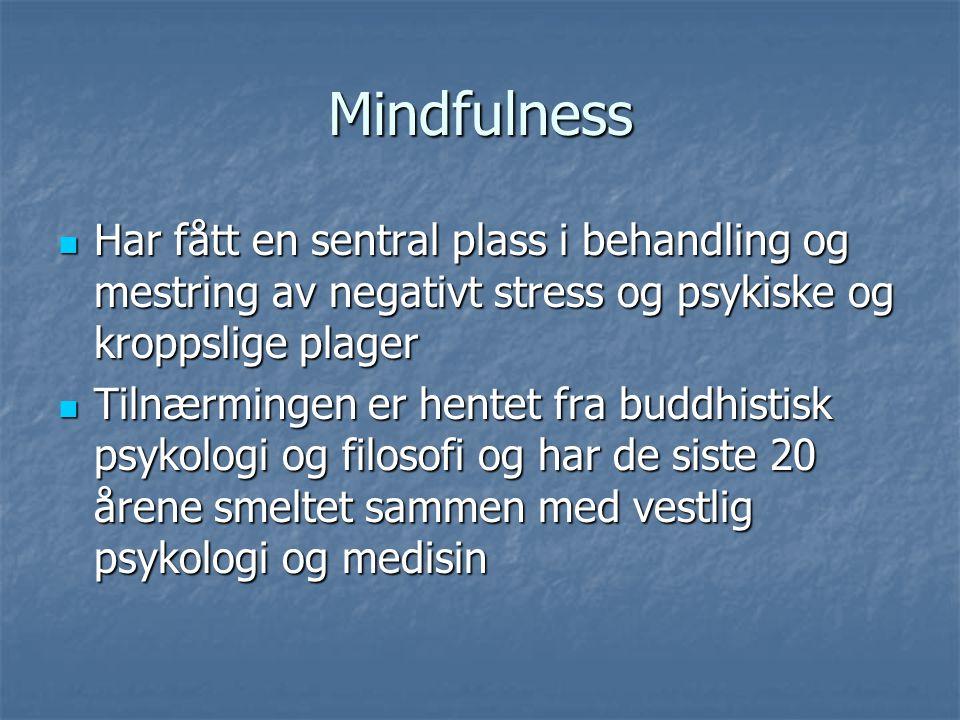Mindfulness Har fått en sentral plass i behandling og mestring av negativt stress og psykiske og kroppslige plager.