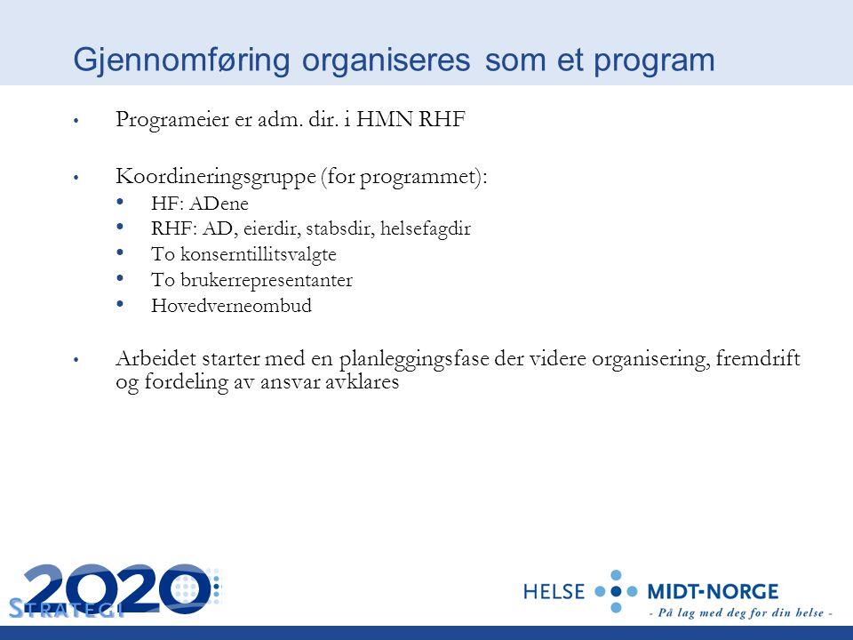 Gjennomføring organiseres som et program