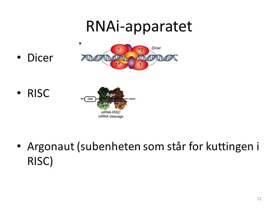RNAi-apparatet Dicer RISC