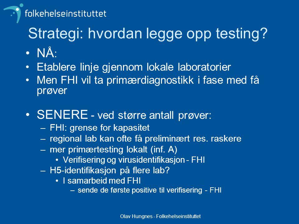 Strategi: hvordan legge opp testing