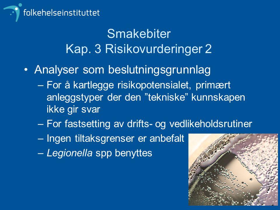 Smakebiter Kap. 3 Risikovurderinger 2