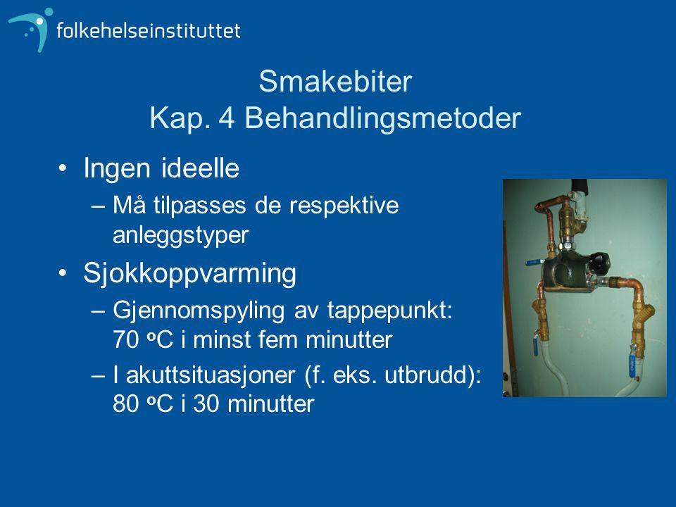 Smakebiter Kap. 4 Behandlingsmetoder