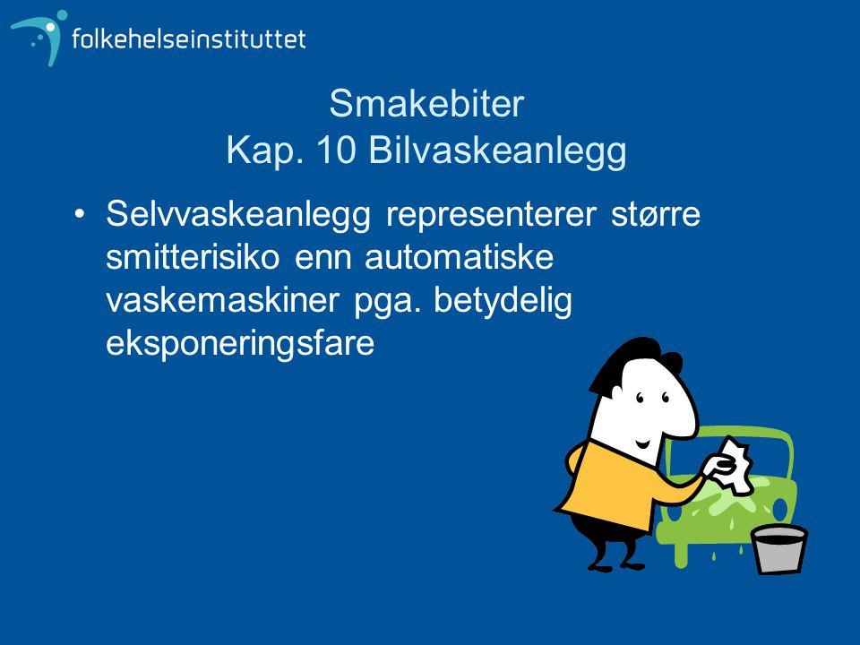 Smakebiter Kap. 10 Bilvaskeanlegg