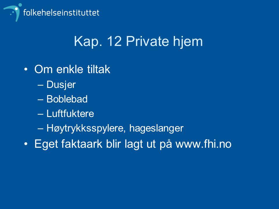 Kap. 12 Private hjem Om enkle tiltak