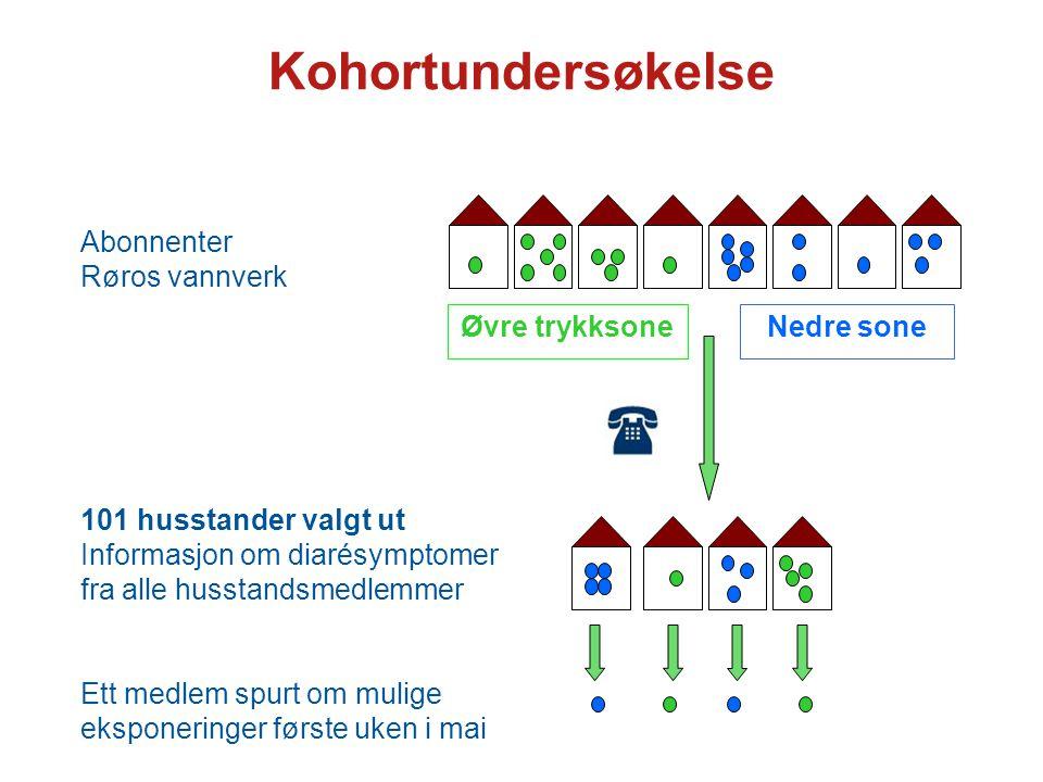 Kohortundersøkelse Øvre trykksone Nedre sone Abonnenter Røros vannverk