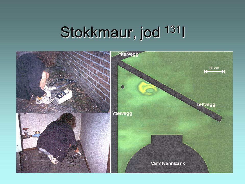 Stokkmaur, jod 131I