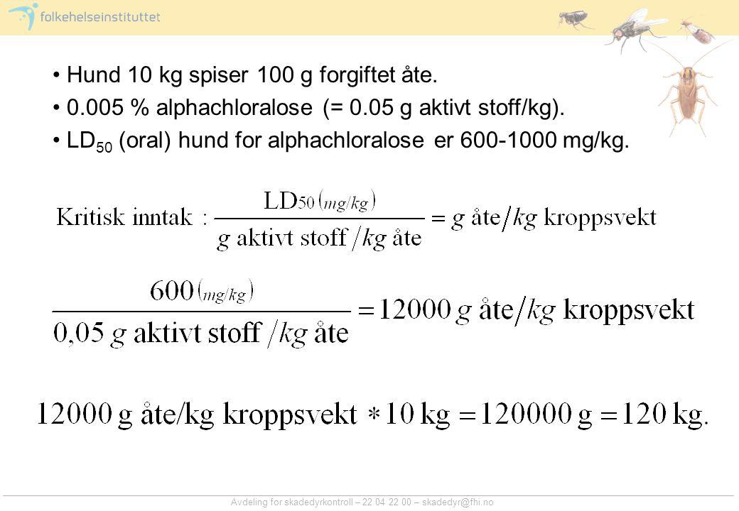 Hund 10 kg spiser 100 g forgiftet åte.