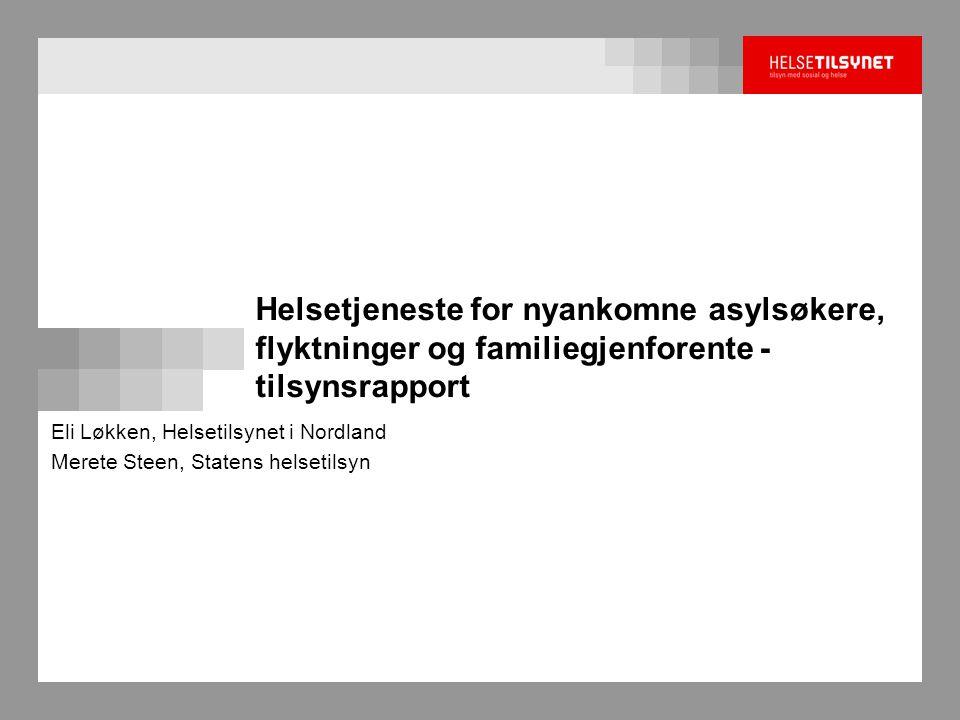 Eli Løkken, Helsetilsynet i Nordland Merete Steen, Statens helsetilsyn