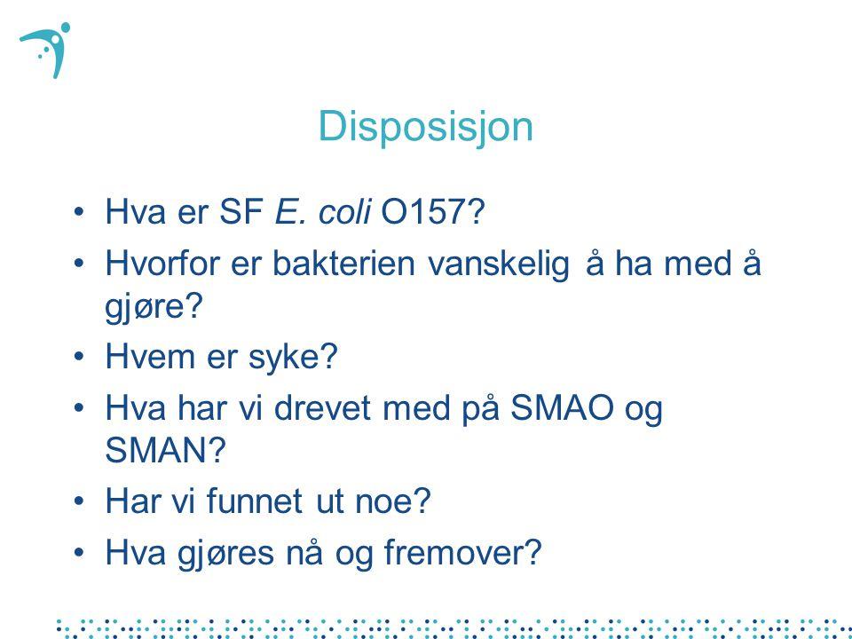Disposisjon Hva er SF E. coli O157