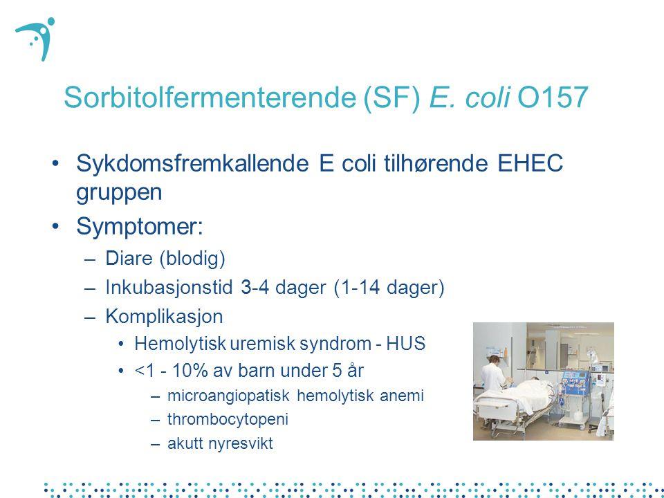 Sorbitolfermenterende (SF) E. coli O157