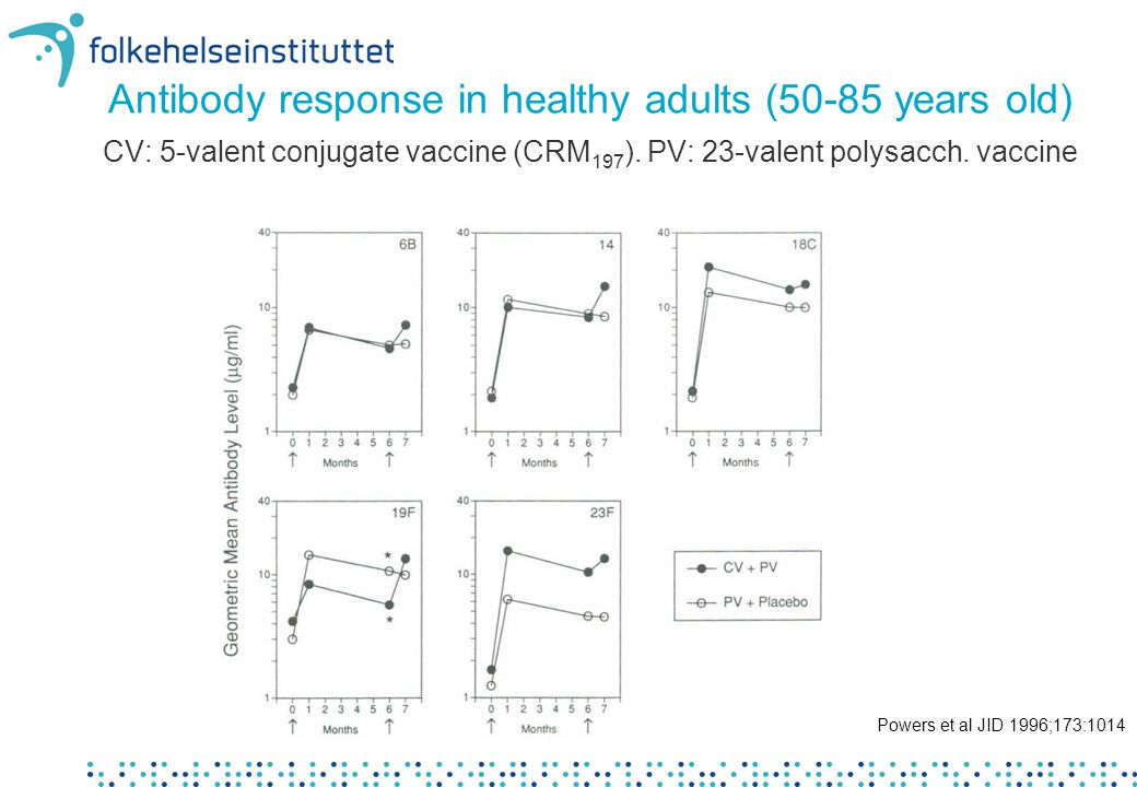 Antibody response in healthy adults (50-85 years old) CV: 5-valent conjugate vaccine (CRM197). PV: 23-valent polysacch. vaccine