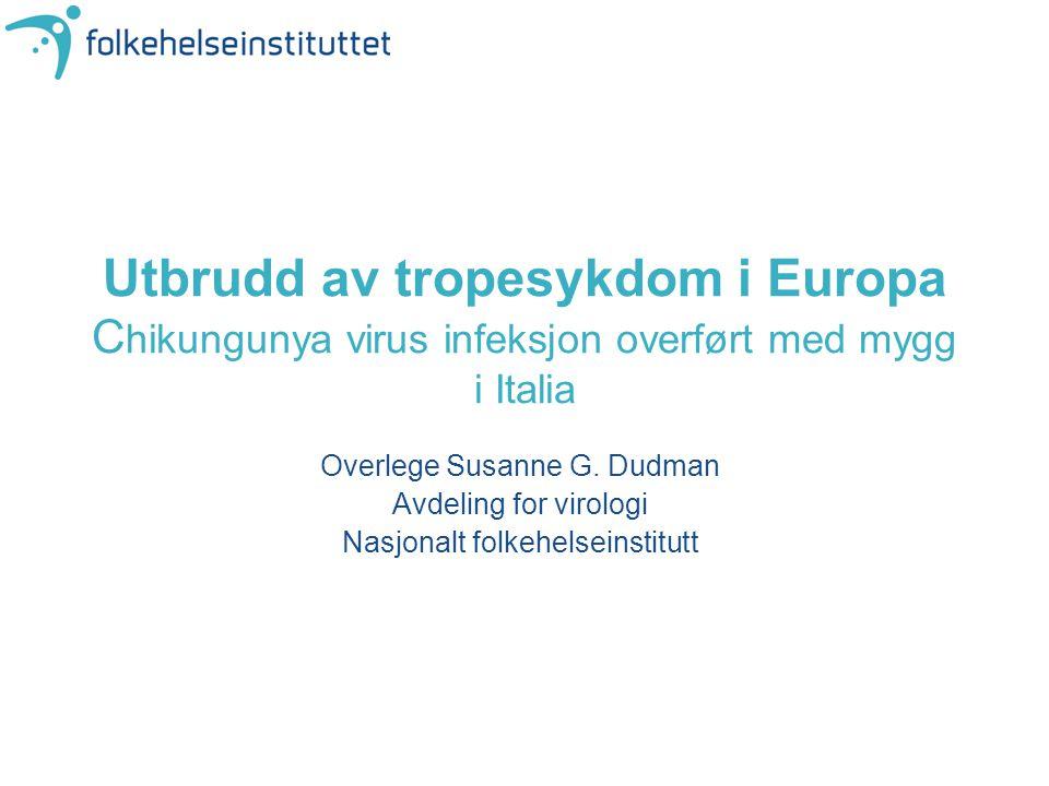 Utbrudd av tropesykdom i Europa Chikungunya virus infeksjon overført med mygg i Italia