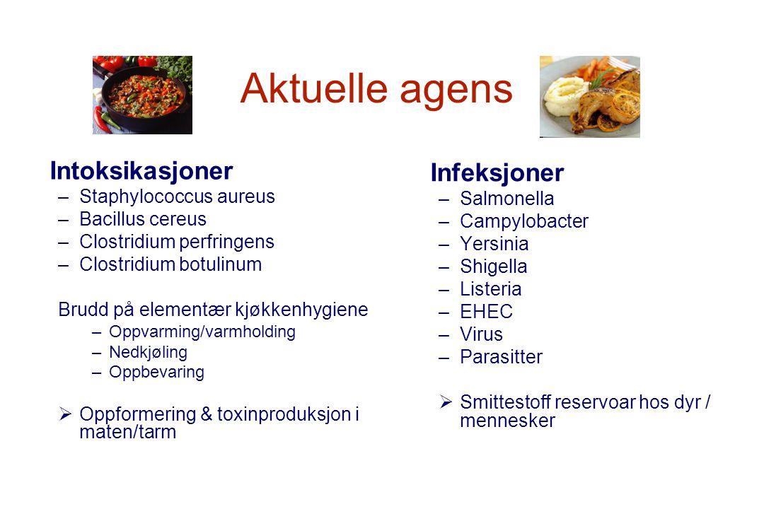 Aktuelle agens Intoksikasjoner Infeksjoner Staphylococcus aureus