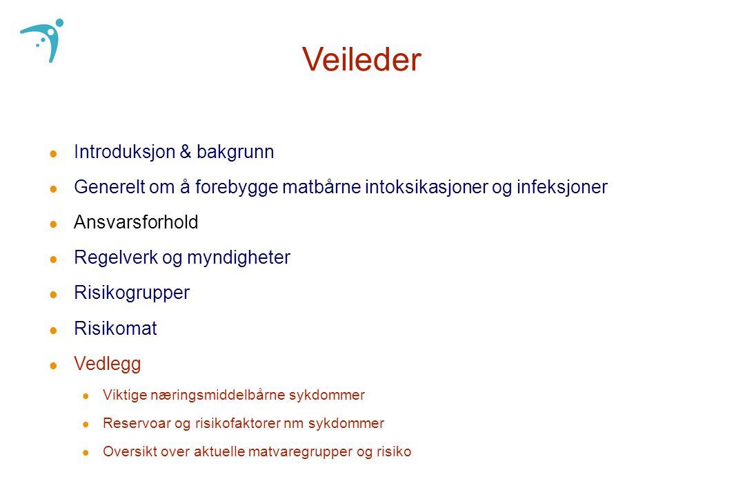 Veileder Introduksjon & bakgrunn