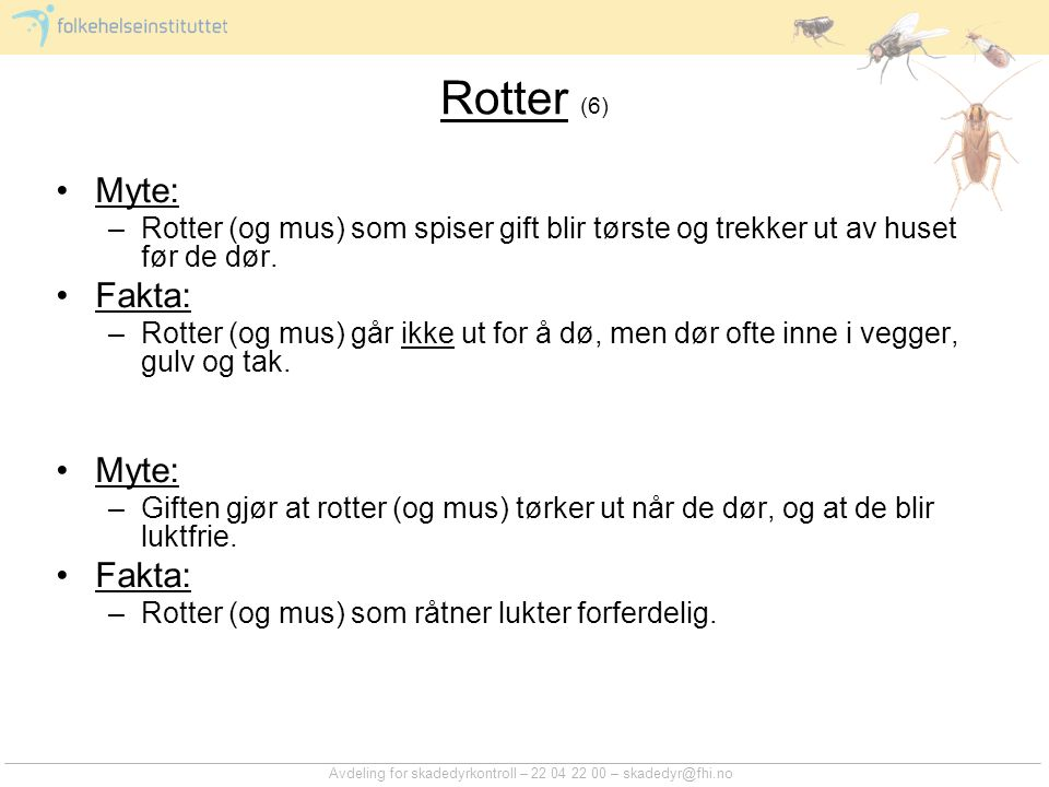 Rotter (6) Myte: Rotter (og mus) som spiser gift blir tørste og trekker ut av huset før de dør. Fakta: