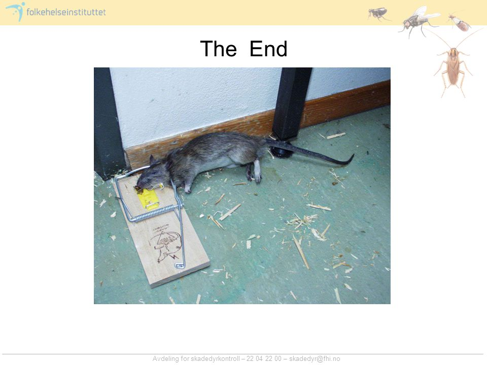 The End Avdeling for skadedyrkontroll – 22 04 22 00 – skadedyr@fhi.no
