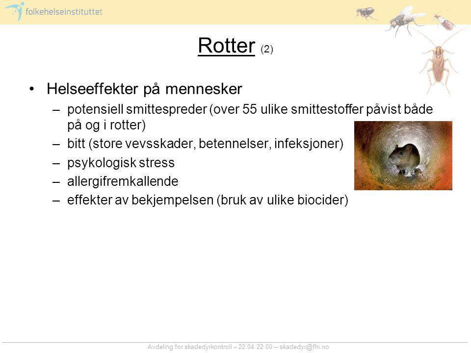 Rotter (2) Helseeffekter på mennesker