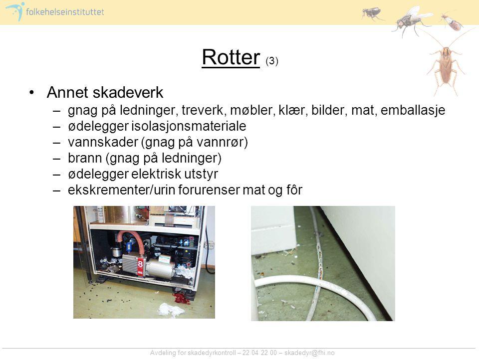 Rotter (3) Annet skadeverk