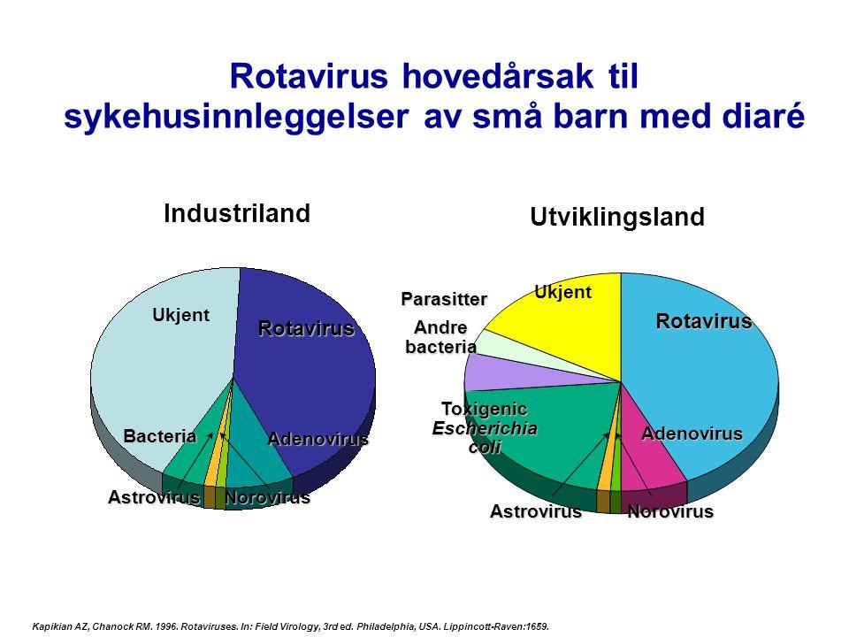 Rotavirus hovedårsak til sykehusinnleggelser av små barn med diaré