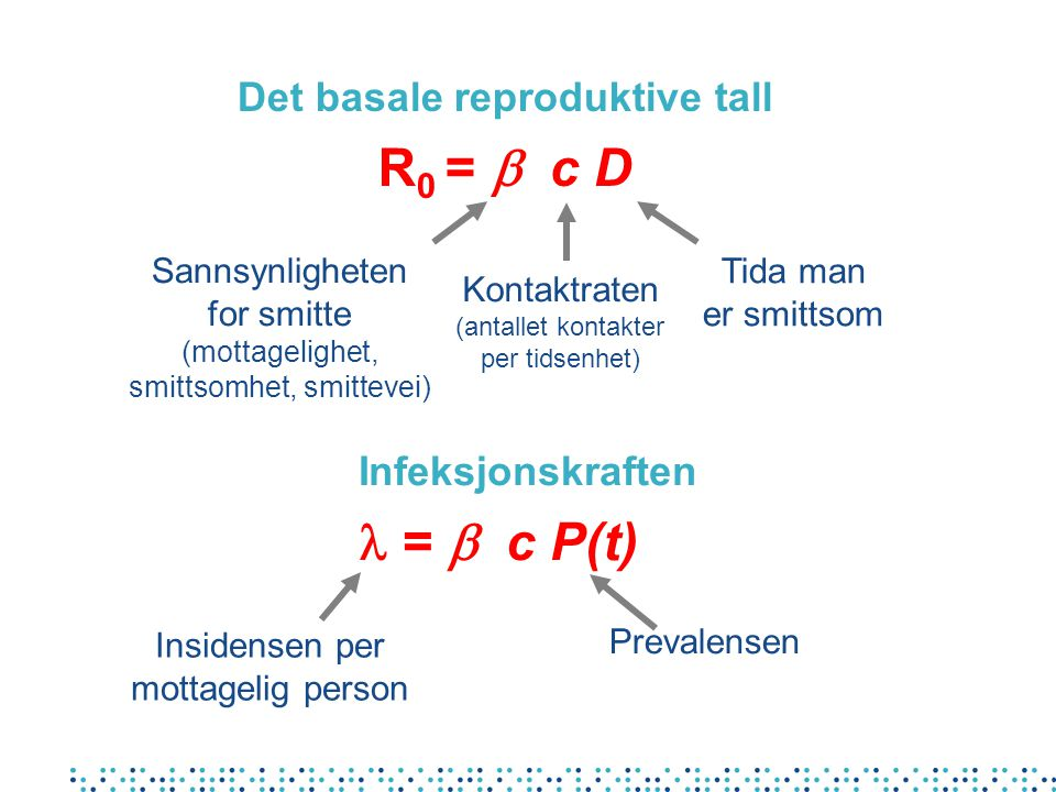 Det basale reproduktive tall