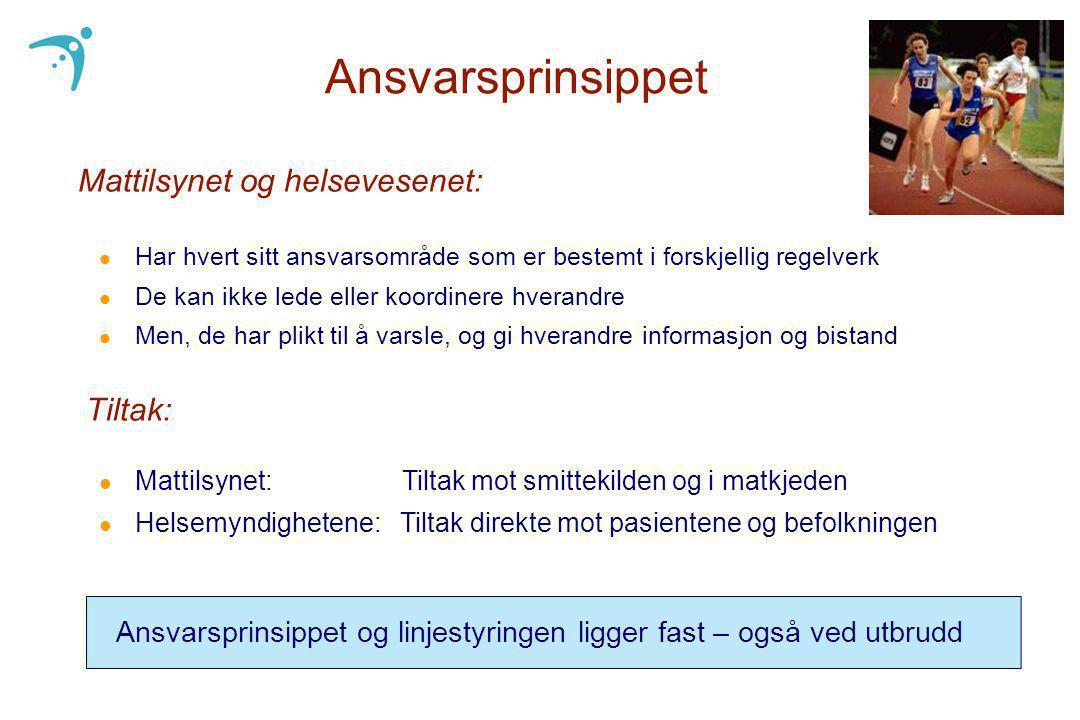 Ansvarsprinsippet Mattilsynet og helsevesenet: Tiltak: