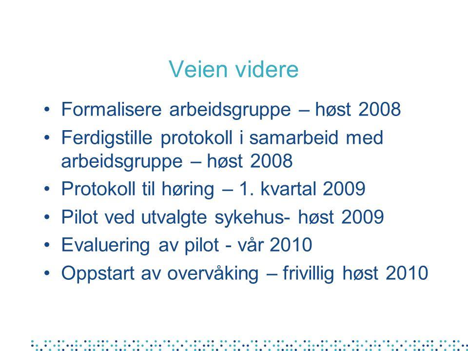 Veien videre Formalisere arbeidsgruppe – høst 2008