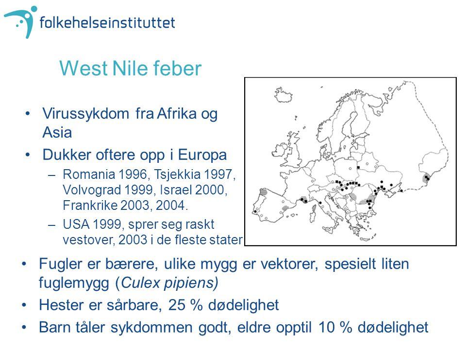 West Nile feber Virussykdom fra Afrika og Asia