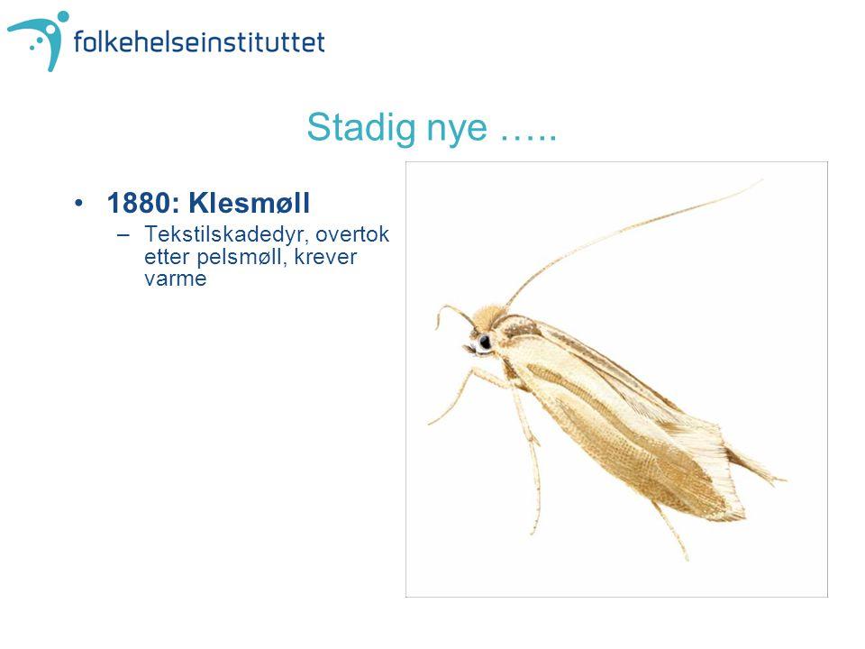 Stadig nye ….. 1880: Klesmøll Tekstilskadedyr, overtok etter pelsmøll, krever varme