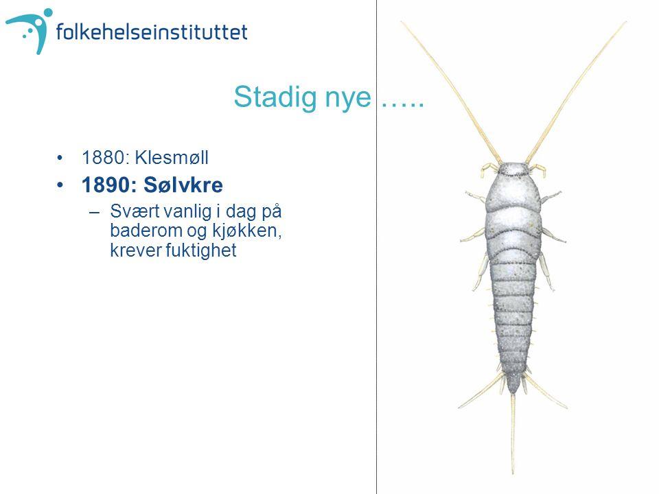 Stadig nye ….. 1890: Sølvkre 1880: Klesmøll