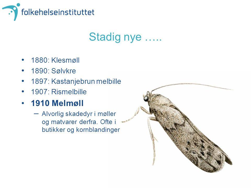 Stadig nye ….. 1910 Melmøll 1880: Klesmøll 1890: Sølvkre