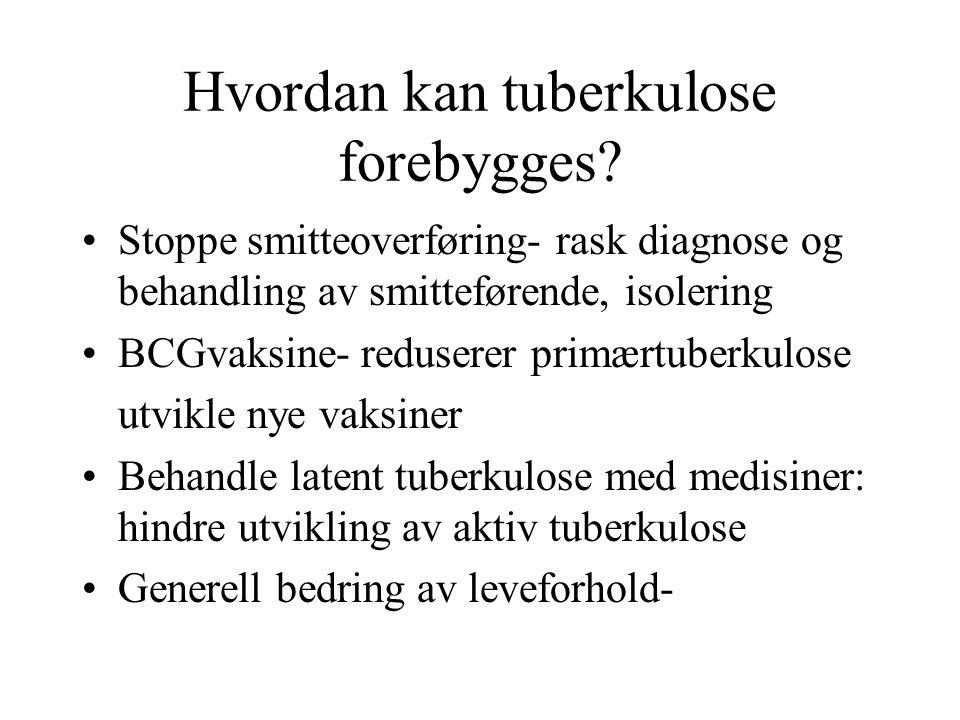 Hvordan kan tuberkulose forebygges
