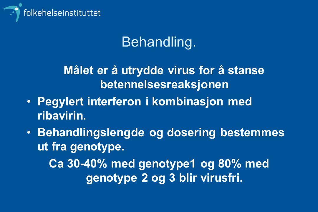 Ca 30-40% med genotype1 og 80% med genotype 2 og 3 blir virusfri.