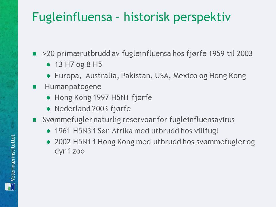 Fugleinfluensa – historisk perspektiv