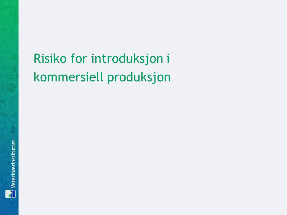 Risiko for introduksjon i