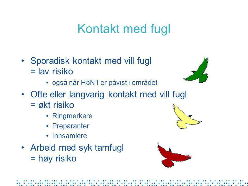 Kontakt med fugl Sporadisk kontakt med vill fugl = lav risiko