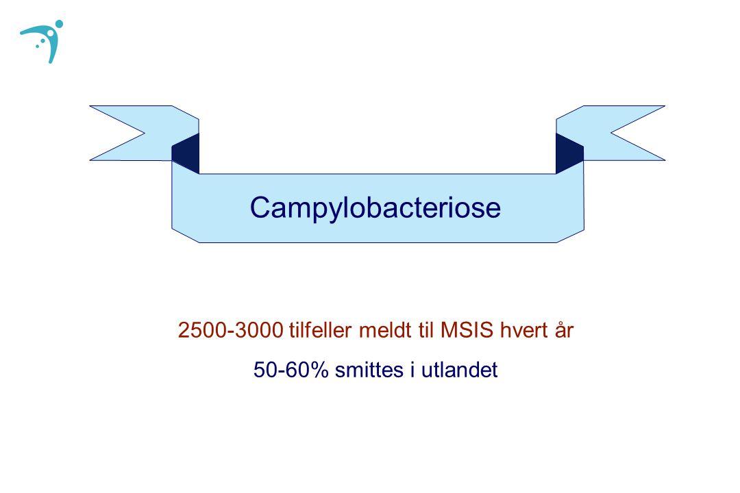 2500-3000 tilfeller meldt til MSIS hvert år
