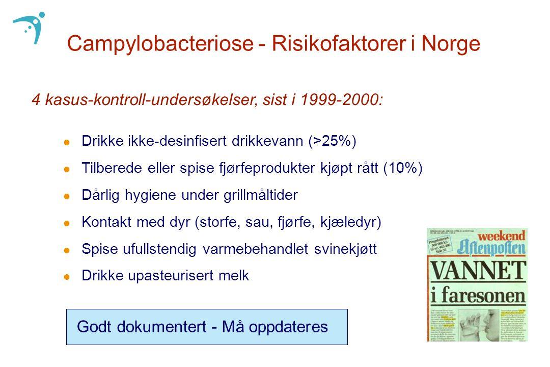 Campylobacteriose - Risikofaktorer i Norge