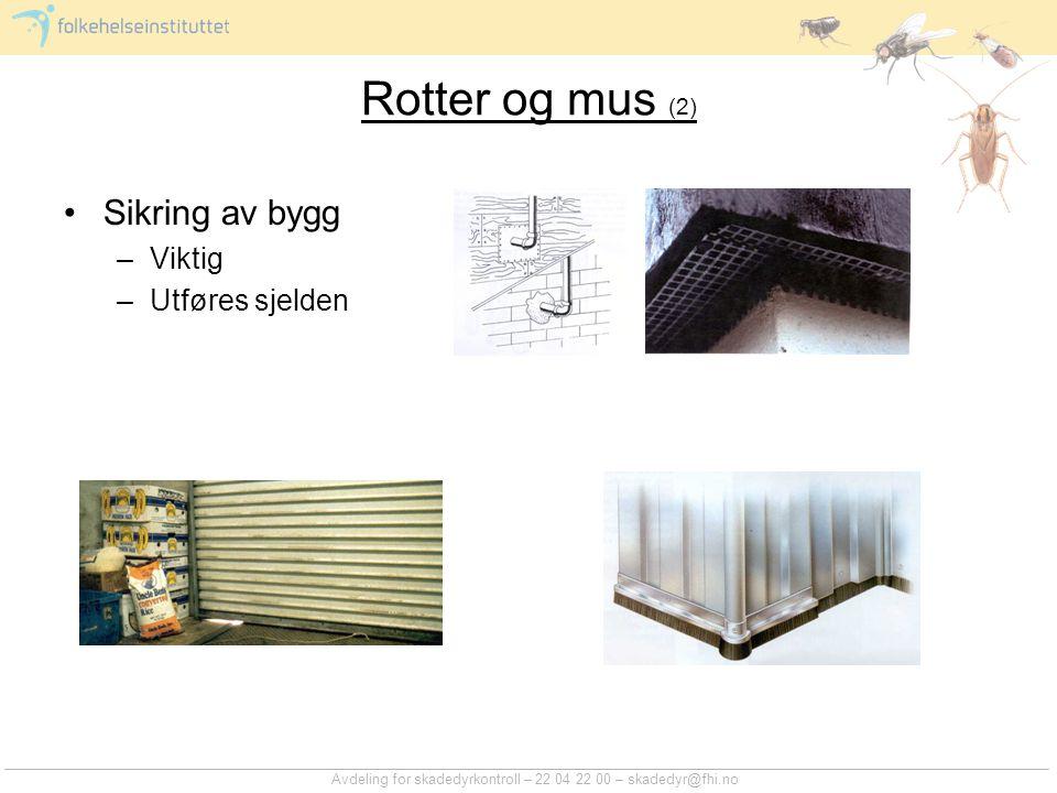 Rotter og mus (2) Sikring av bygg Viktig Utføres sjelden