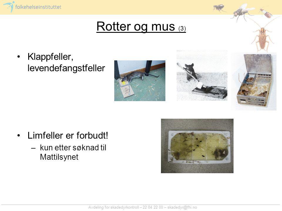 Rotter og mus (3) Klappfeller, levendefangstfeller