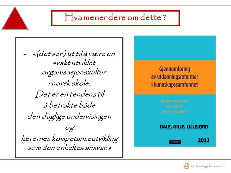Hva mener dere om dette «(det ser ) ut til å være en svakt utviklet organisasjonskultur. i norsk skole.